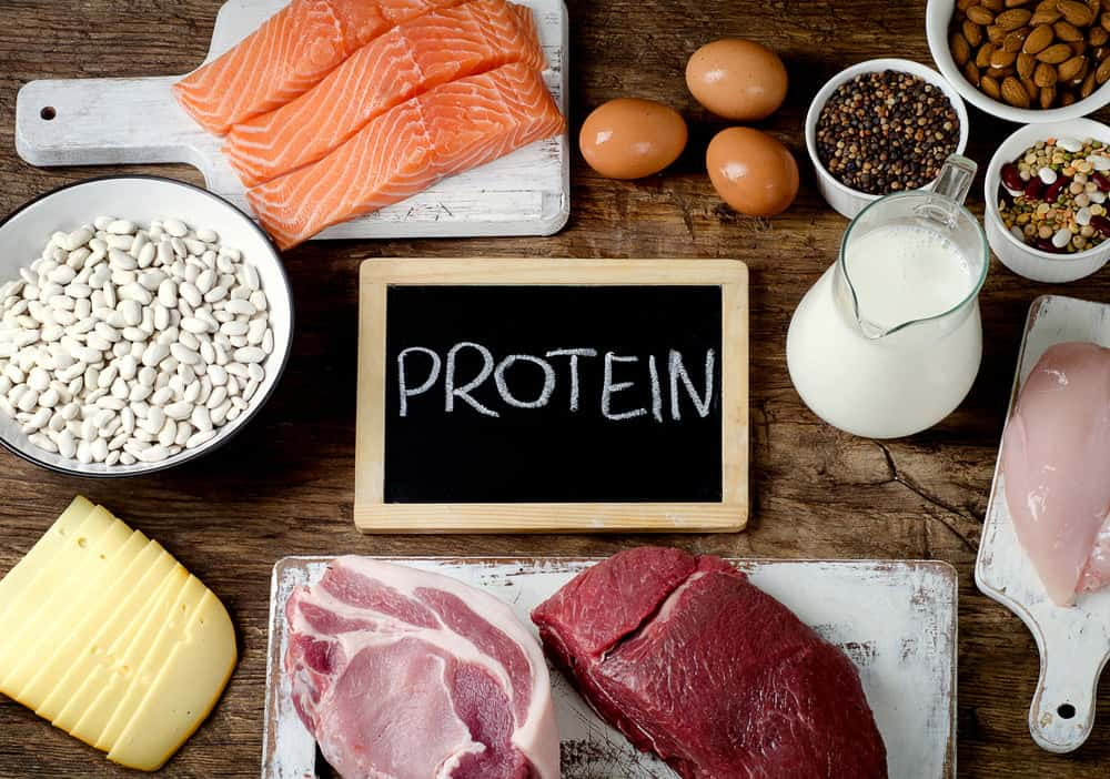 5 Science Based Reasons High Protein Diet for Weight Loss is Effective
